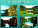 1148-describe-las-caracteristicas-de-un-ecosistema-y-las-transformaciones-provocadas-por-las-activid