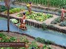 2102-reconoce-el-proceso-de-formacion-de-una-civilizacion-agricola-que-llamamos-mesoamerica