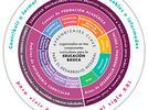 Componentes curriculares de la educación básica