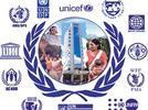 Analizar documentos sobre los derechos humanos