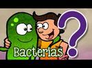 1140-reconoce-bacterias-y-hongos-como-seres-vivos-de-gran-importancia-en-los-ecosistemas