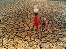 La escasez del agua