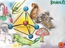 1740-identifica-las-funciones-de-la-celula-y-sus-estructuras-basicas-pared-celular-membrana-citoplas