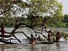 1733-explica-la-importancia-etica-estetica-ecologica-y-cultural-de-la-biodiversidad-en-mexico