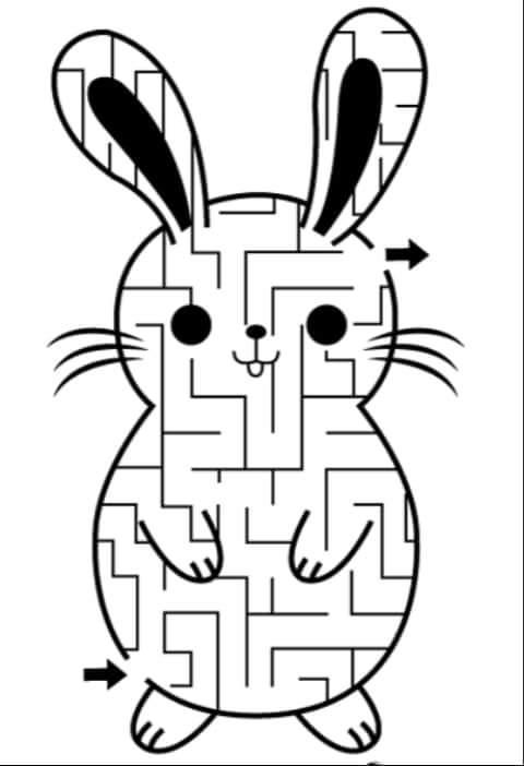laberinto+conejo.jpg